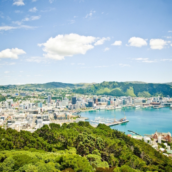 new zealand is paying tech workers to visit and