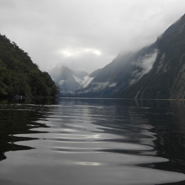 Milford Sound, Milford Sound, New Zealand