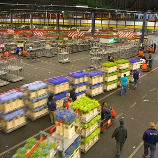 FloraHolland, Aalsmeer, The Netherlands