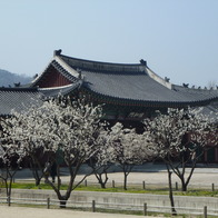 Gyeongbokgung, Seoul, South Korea