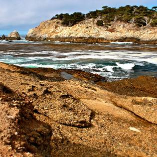 Point Lobos State Reserve, Carmel, California