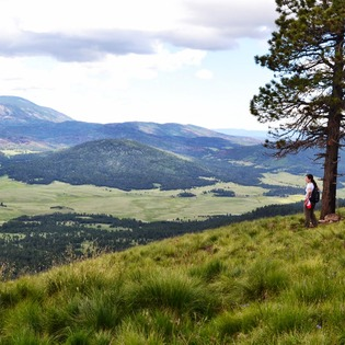 Valles Caldera National Preserve, Jemez Springs, New Mexico