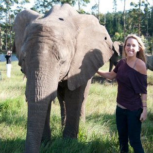 Knysna Elephant Park, Greater Plettenberg Bay, South Africa