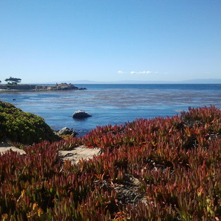 Monterey Peninsula Recreational Trail, Pacific Grove, California