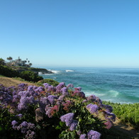 La Jolla Coast Walk, San Diego, California