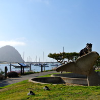 Morro Bay, Morro Bay, California