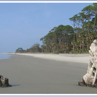 Hunting Island State Park, St Helena Island, South Carolina
