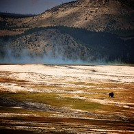 Yellowstone National Park, Gardiner, Montana