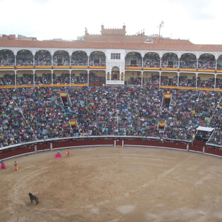 Bullfights, Fans, and Flamenco