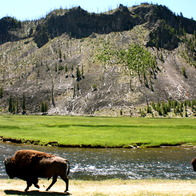 Yellowstone National Park, Yellowstone National Park, Wyoming