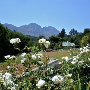 Knorhoek, Stellenbosch, South Africa