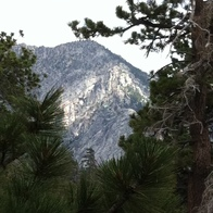 Idyllwild and Mount San Jacinto State Park, Mountain Center, California