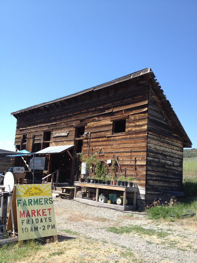 Sierra Valley Farms, Beckwourth, California