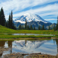Mount Rainier National Park, Enumclaw, Washington