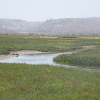Tijuana Slough National Wildlife Refuge, Imperial Beach, California
