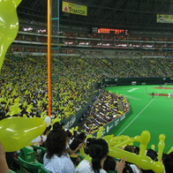 Fukuoka Dome, Chuo Ward, Japan