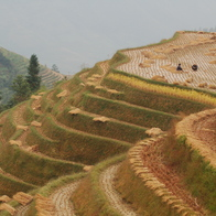 Longji Rice Terrace Scenic Spot, Guilin, China