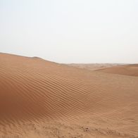 Arabian Desert, Murqquab, United Arab Emirates