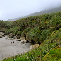 Truman Track, Paparoa National Park, New Zealand