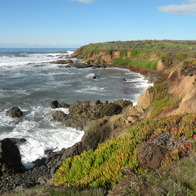 Fiscalini Ranch Preserve Trail, Cambria, California