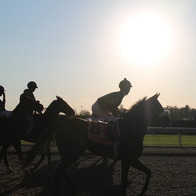 Keeneland Race Course, Lexington, Kentucky