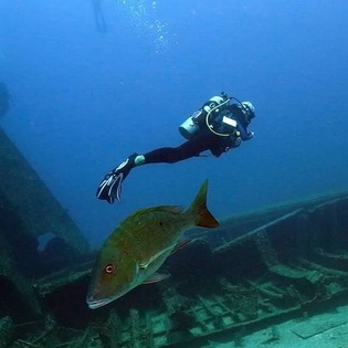 The Odyssey Wreck, Sandy Bay, Honduras