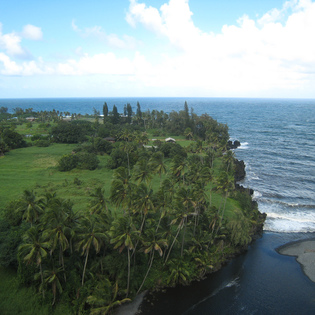 Where to go in Maui Now