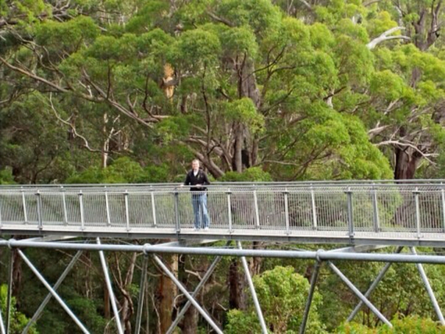 Tree top walk, Perth, Australia