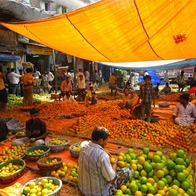 Mechhua Fruit Market, Kolkata, India
