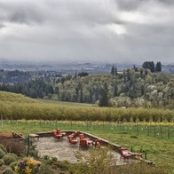 Black Walnut Inn & Vineyard, Dundee, Oregon
