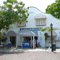 Key West Aquarium, Key West, Florida