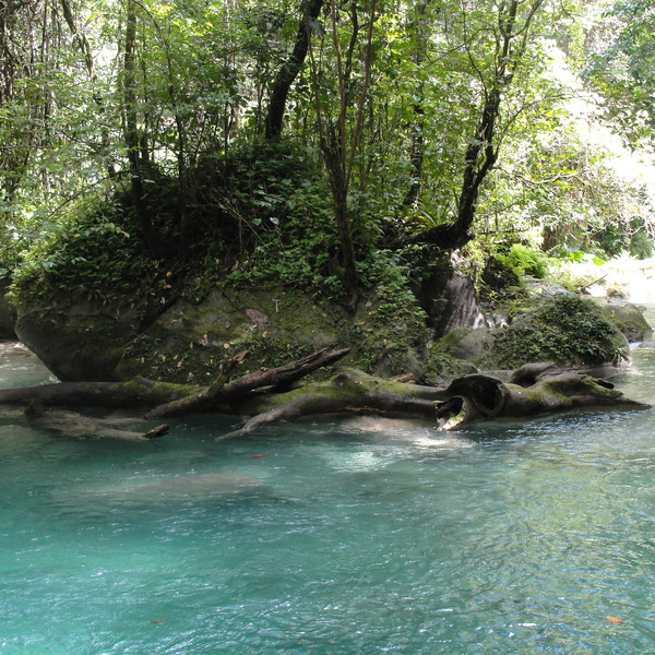 Hiking the lower pools with Rasta Renny, Portland Parish, Jamaica