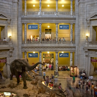 Smithsonian Museum of Natural History, Washington, District of Columbia