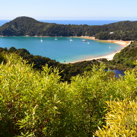 Abel Tasman National Park , Pohara, New Zealand