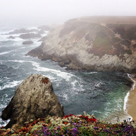 Bodega Head Coast, Bodega Bay, California