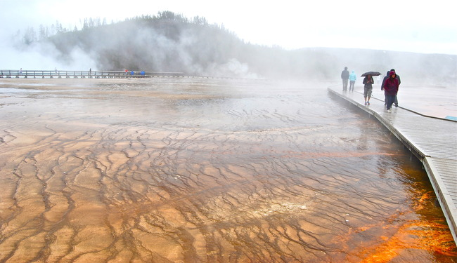 Hot Springs near Grand Prismatic, Yellowstone National Park, Wyoming