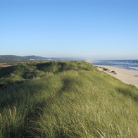 Oregon Dunes National Recreation Area, Reedsport, Oregon