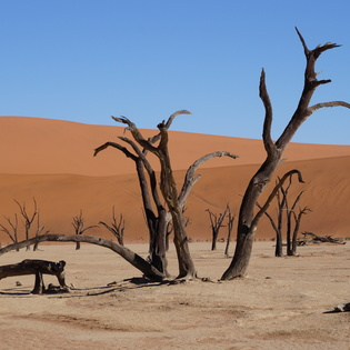 Dead Zone at Red Sand Dunes, Njombe, Tanzania