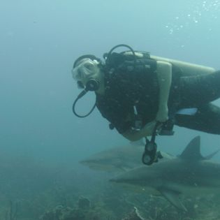 Waihuka Dive Center, Dixon Cove, Honduras