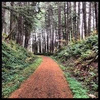 Row River Trail, Dorena, Oregon
