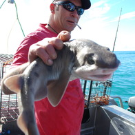 Kaikoura Fishing Charters, South Bay, New Zealand