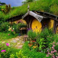 Hobbiton Movie Set and Farm Tours, Matamata, New Zealand