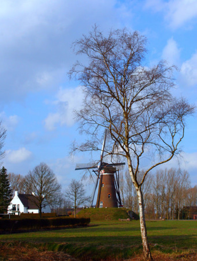 Nuenen, Nuenen, The Netherlands