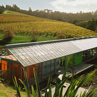 Brick Bay Wines, Snells Beach, New Zealand