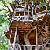 Minister's Tree House, Crossville, Tennessee