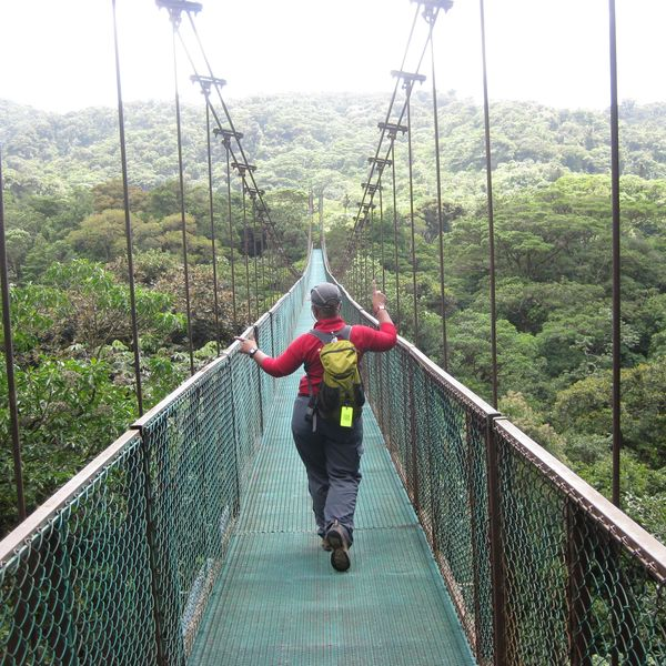 Monteverde - suspension bridge canopy tour, Puntarenas, Costa Rica
