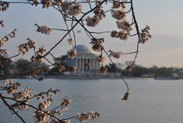 Jefferson Memorial, Washington, District of Columbia
