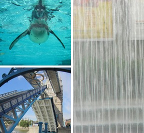 Original mobile tryptic20150429 26272 5e2hug