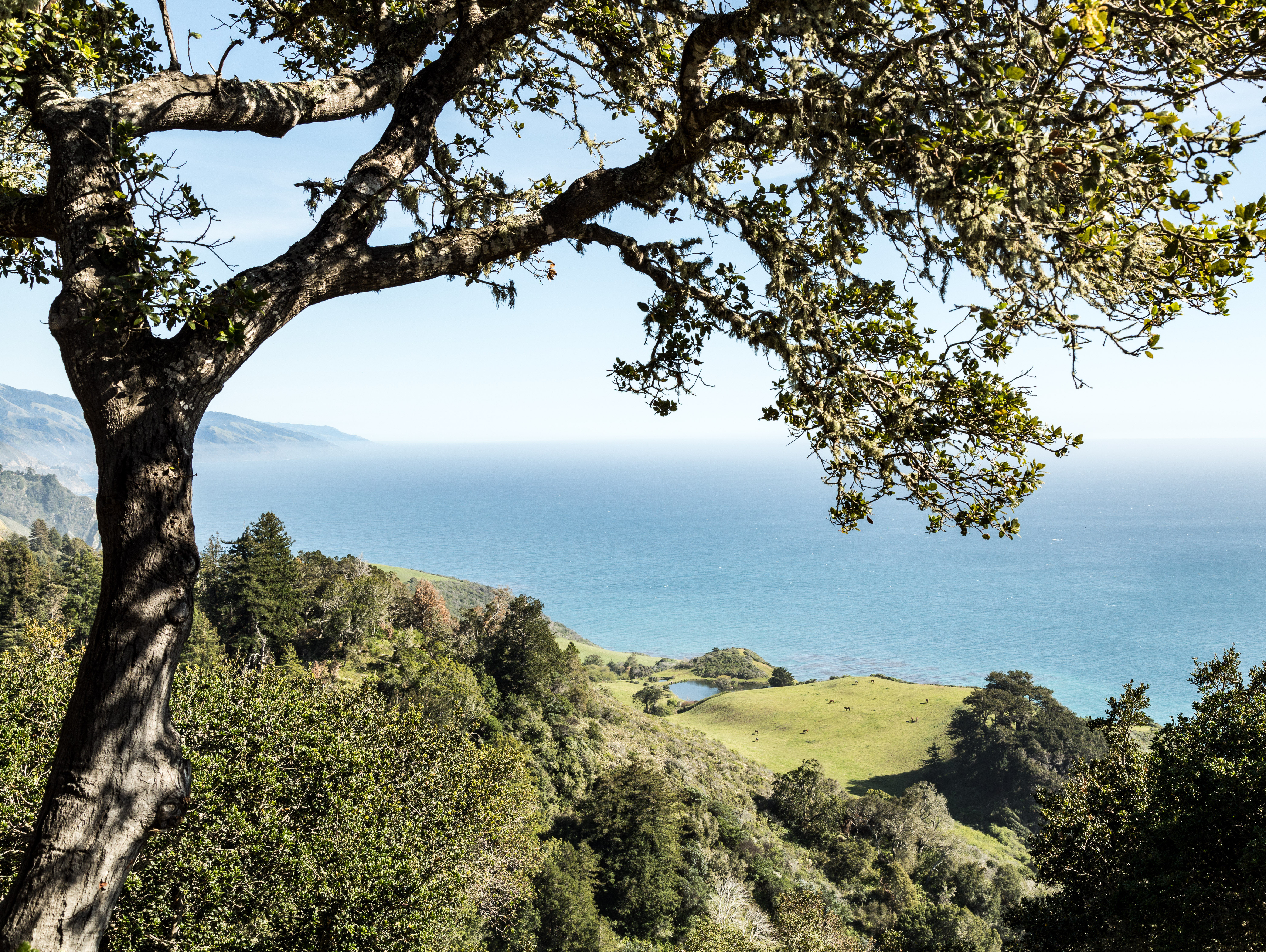 The view from Nepenthe, off Highway 1 in Big Sur