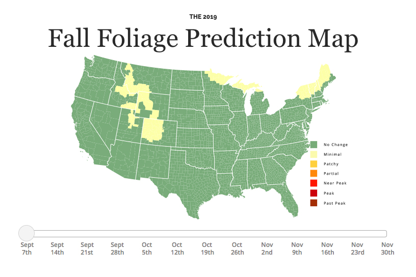 Fall Foliage Prediction Map 2019: Here's When to Expect Peak